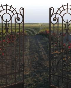 thessaloniki-wineroads3