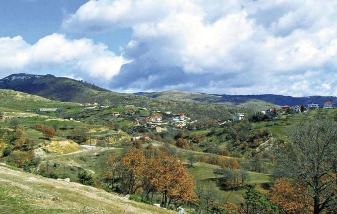 wineroads-dionusou4