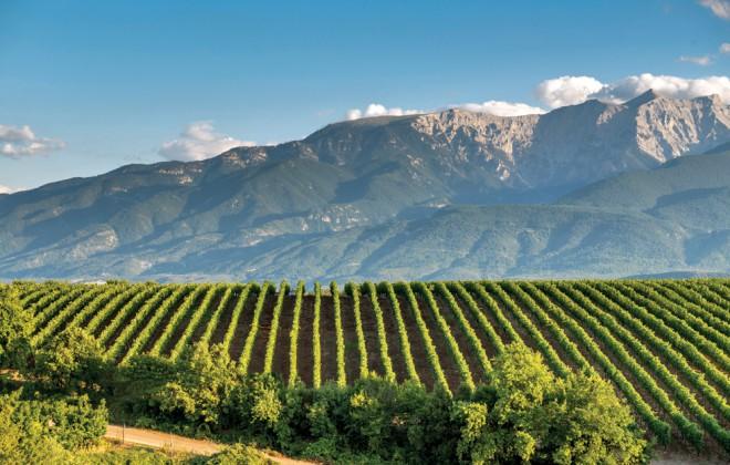 wineroads2