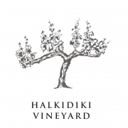 wineroadshalkidiki-Halkidiki-Vineyard