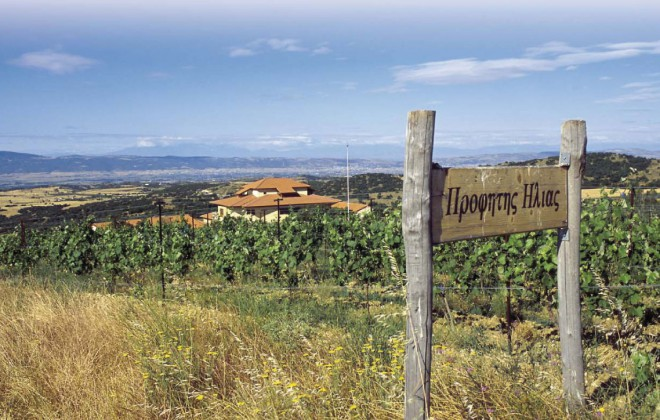 thessaloniki-wineroads4