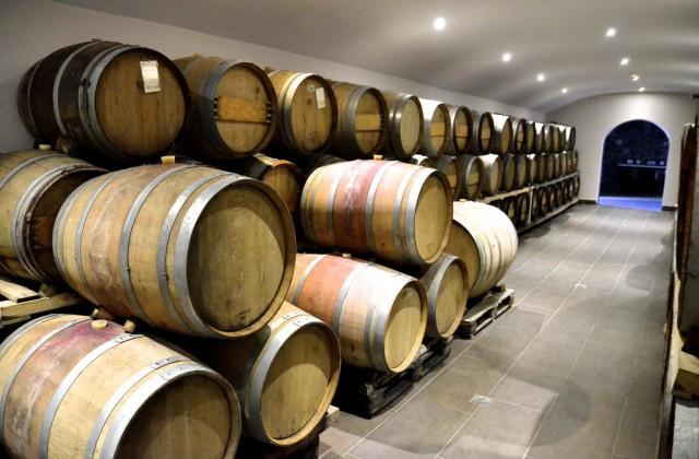 artemis-karamolegos-winery-santorini3